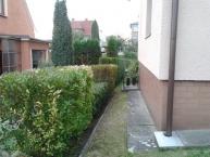 Sekání trávy, stříhání živých plotů, běžná údržba zahrady